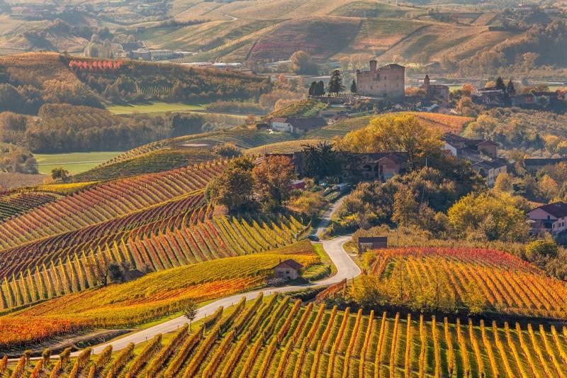 Castelos e Vinhos do Piemonte & Lago Maggiore