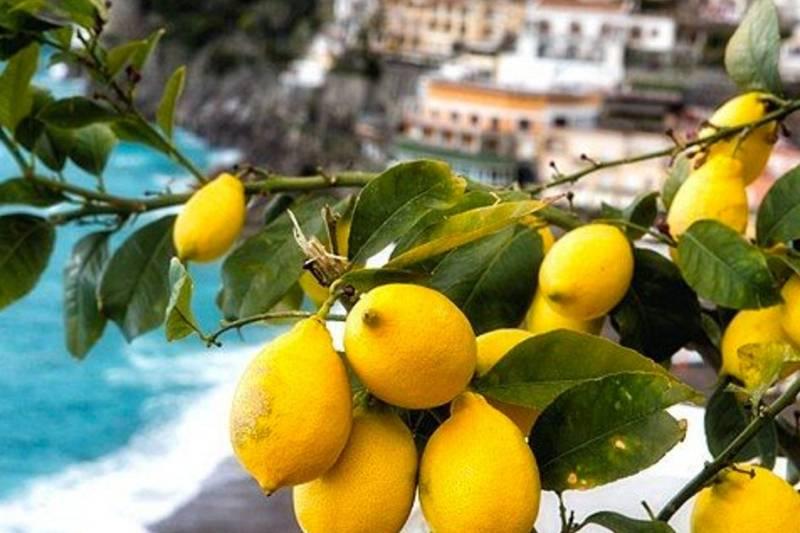 Costa Amalfitana & Pompeia